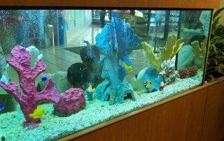 Children's hospital aquarium