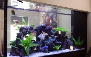 Suspended aquarium
