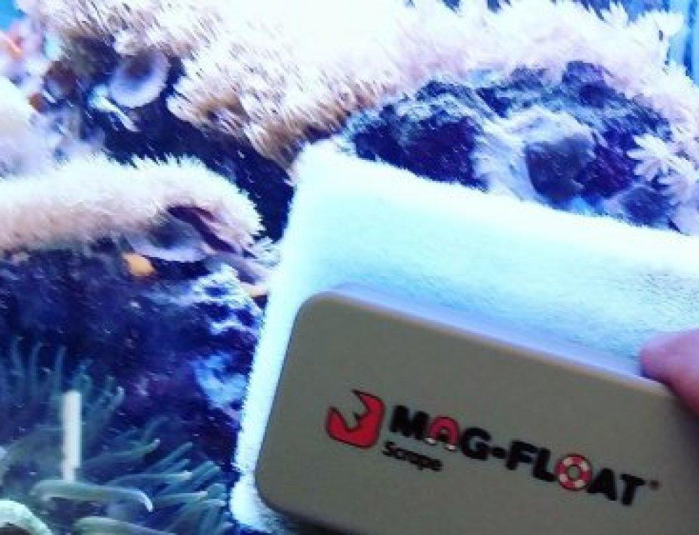 Best magnet to clean aquarium glass