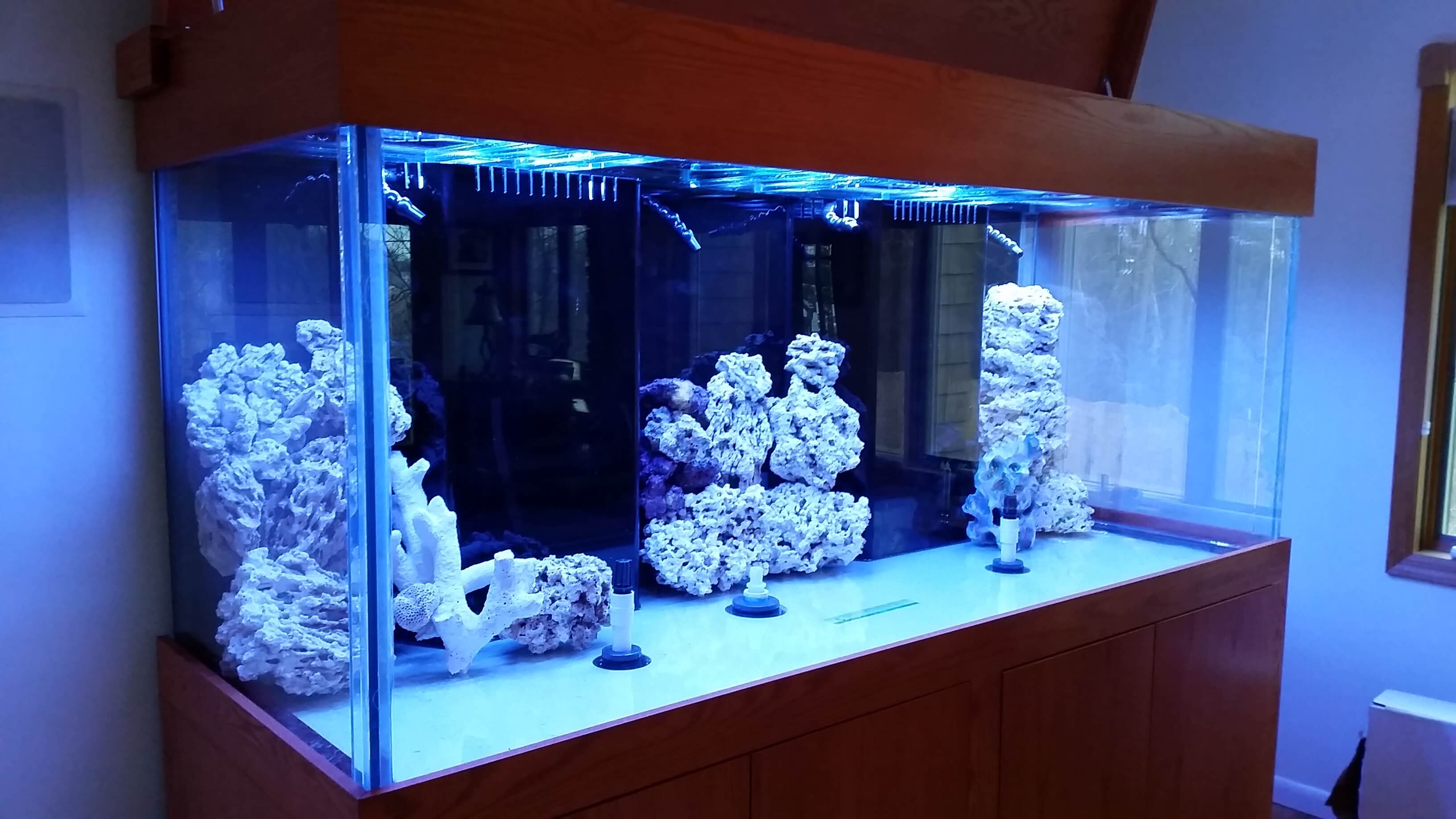450 Gallon glass aquarium
