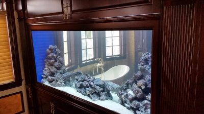 bathroom aquarium