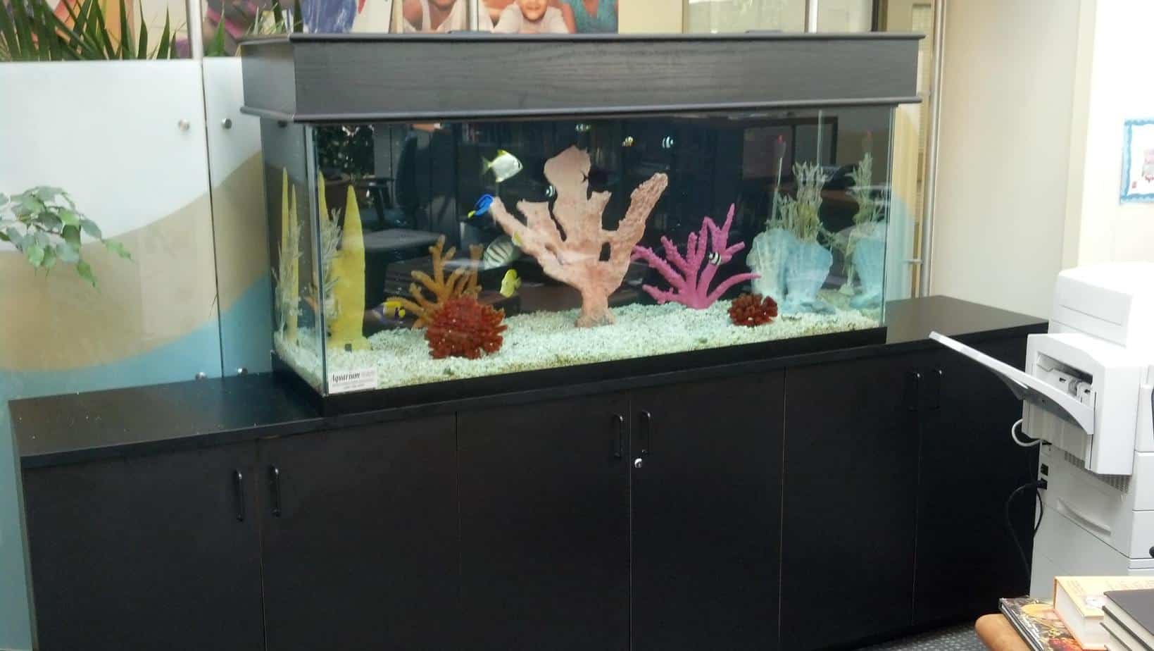 Hospital library aquarium