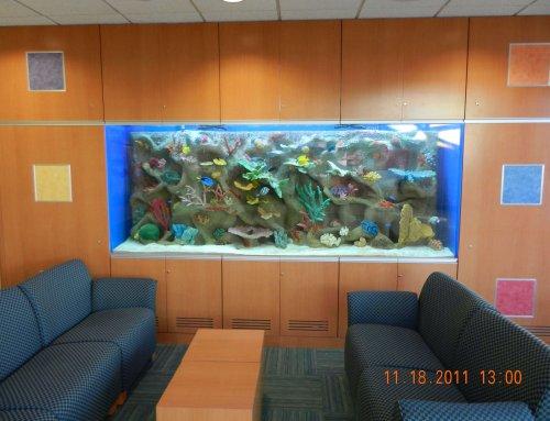 Feeding a 600 gallon saltwater aquarium