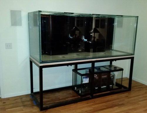 Installing a Custom Glass Aquarium – Day 1: The Tank Arrives
