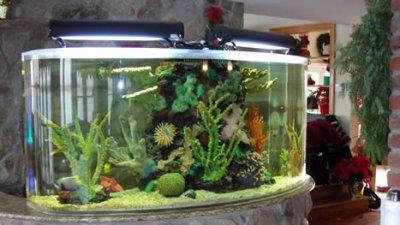 custom artificial reef