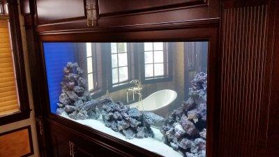 bathroom aquarium